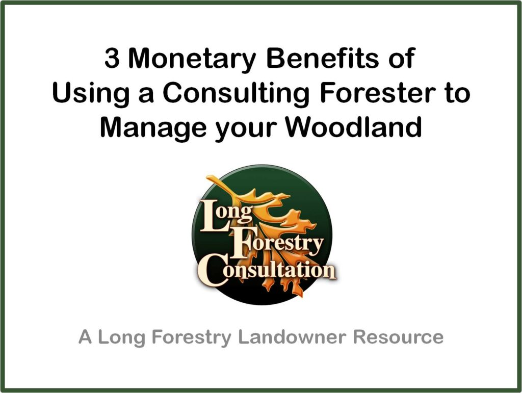 Benefits of a Consulting Forester